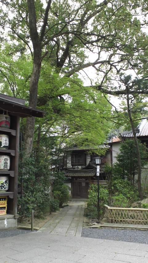 京都_140413_1119~01