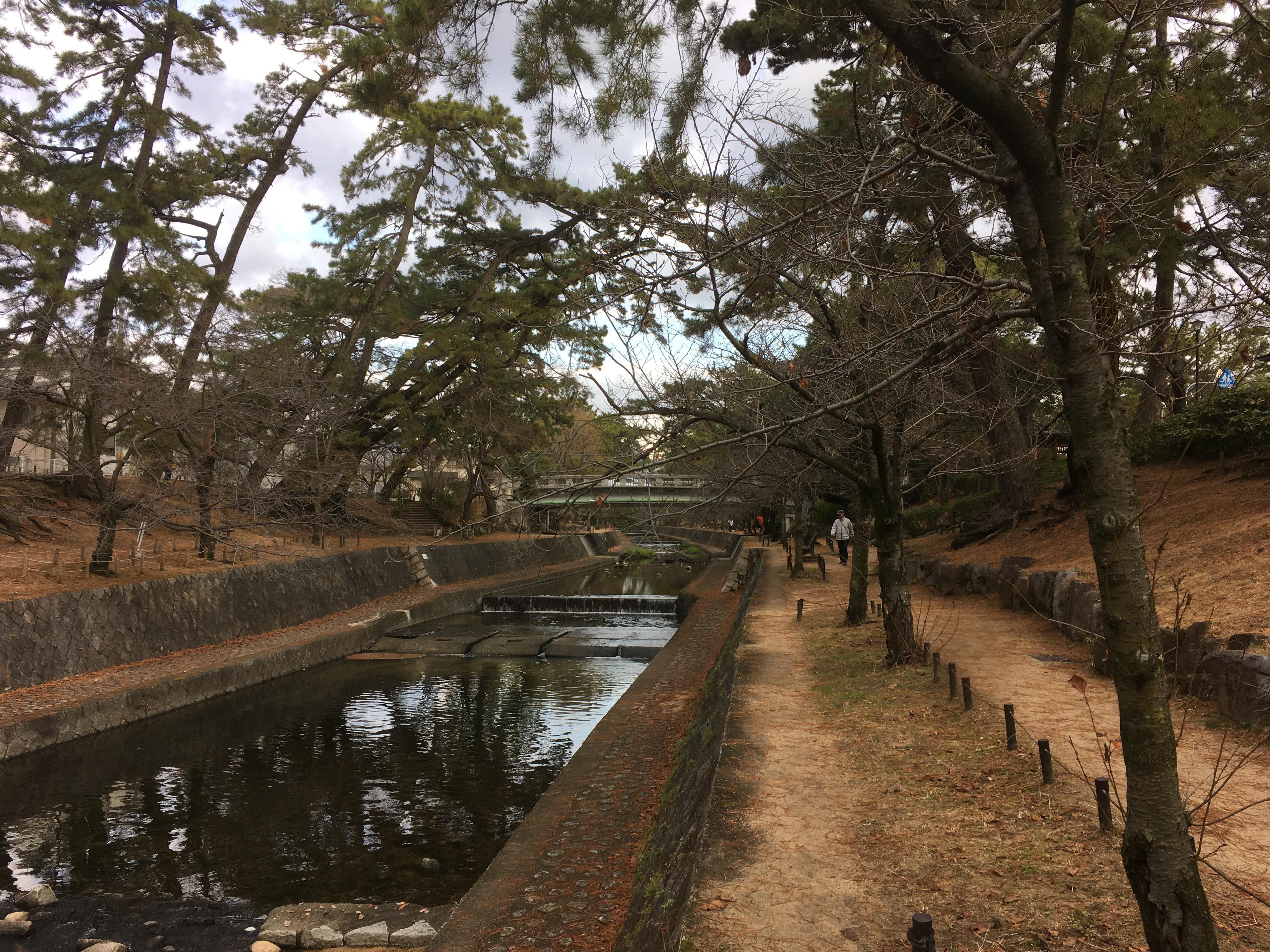 兵庫県_夙川_20200106